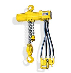 hoists manufacturer & supplier